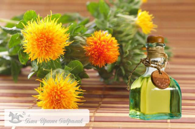 Сафлоровое масло: полезные свойства и противопоказания, как принимать