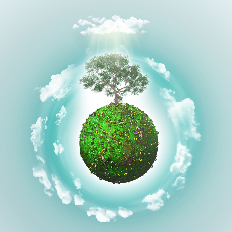 Что такое окружающая среда: определение, особенности защиты и интересные факты