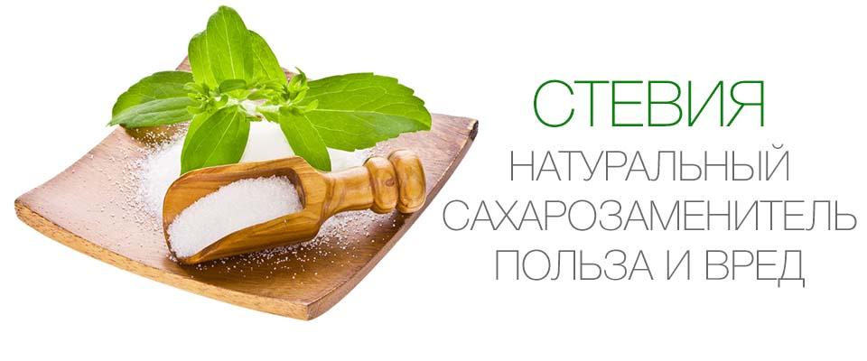 Стевия польза и вред для организма, противопоказания сахарозаменителя стевия | доктор борменталь