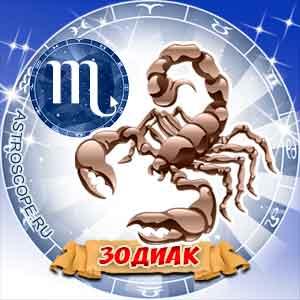 Все о скорпионе: интересные факты и особенности знака зодиака :: инфониак