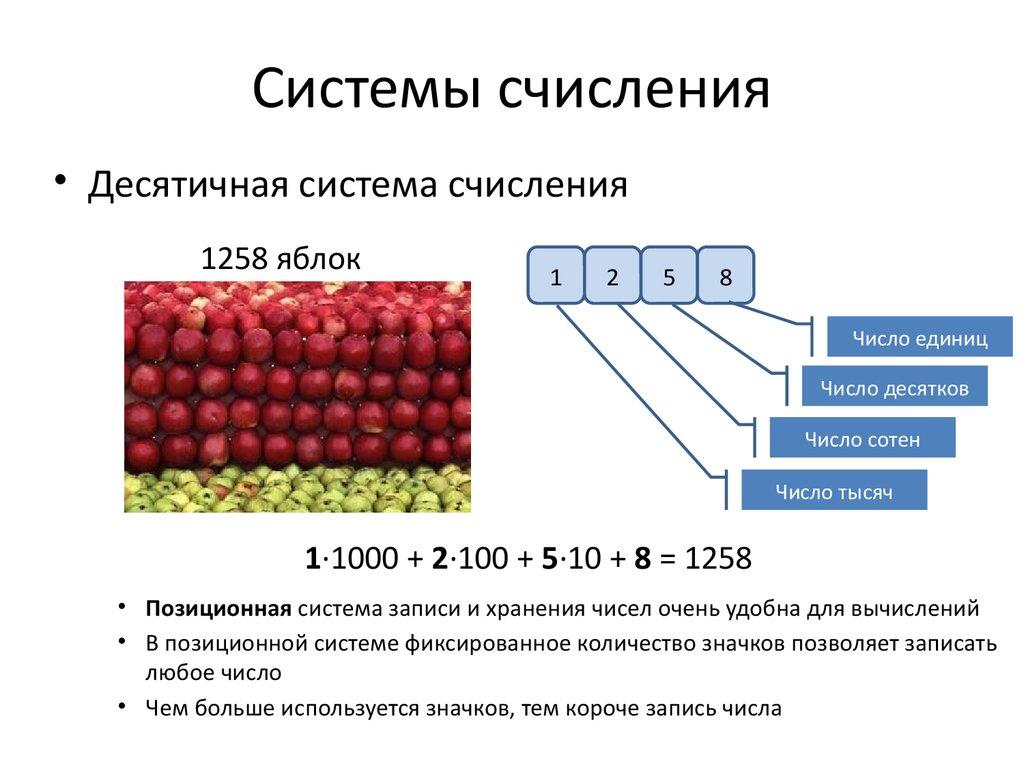 Системы счисления – примеры, таблица, обозначение (9 класс, информатика)