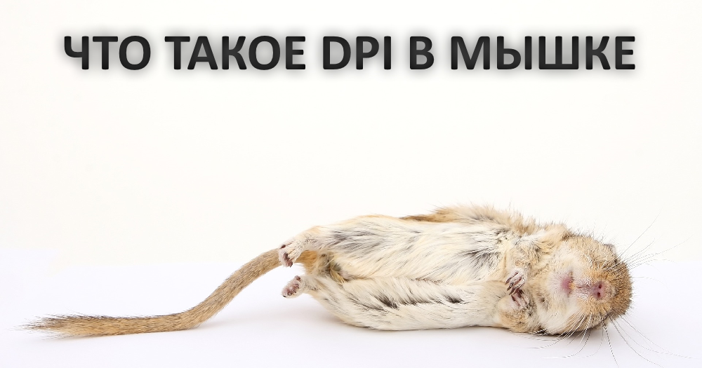 Как узнать dpi мышки: как узнать сколько сейчас dpi на мышке, настройка