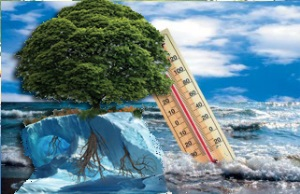 Чем отличаются природные ресурсы от природных условий