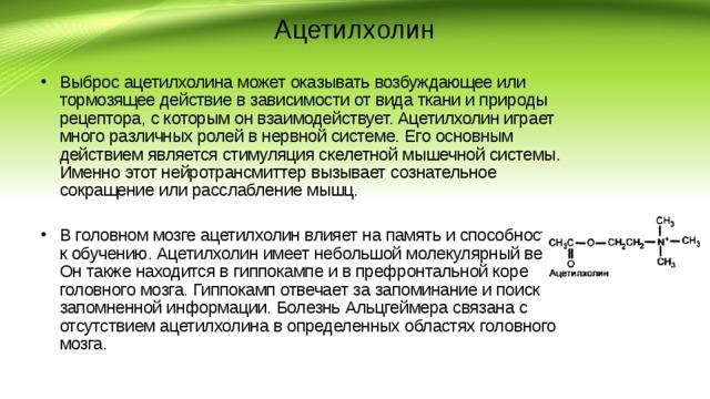 Ацетилхолин — википедия. что такое ацетилхолин