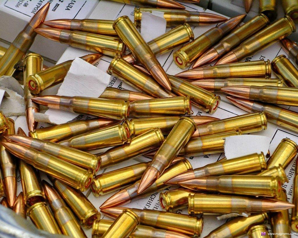 Гильза патрона стрелкового оружия:ликбез от дилетанта estimata