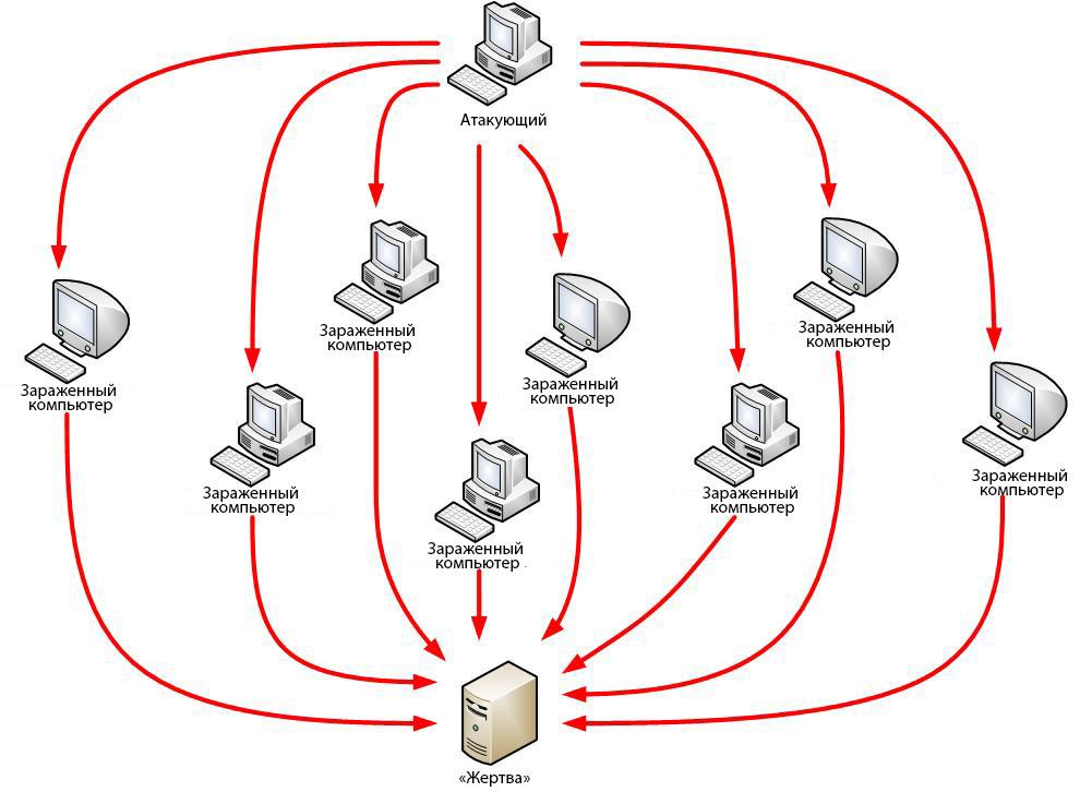 Что такое ddos атака, как найти источники и защитить от нее свой сайт?   biznessystem.ru