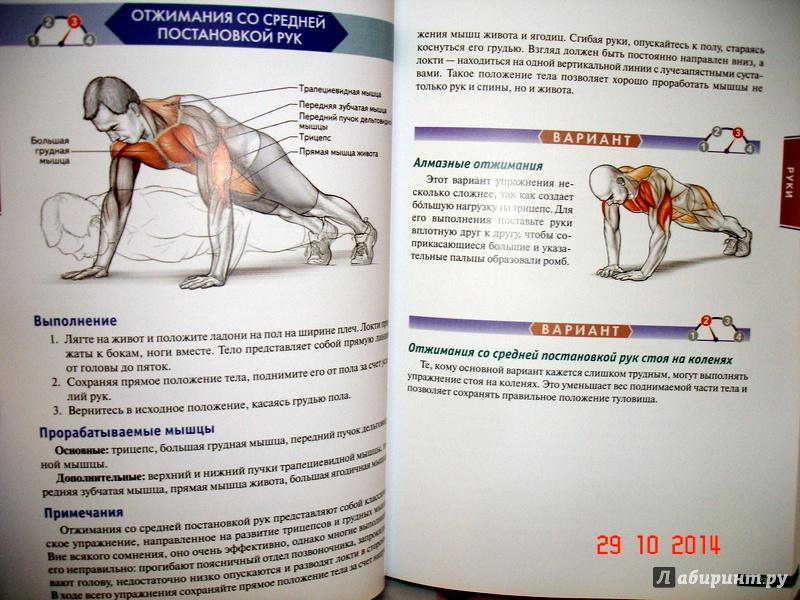 Тренируем мышцы кора: упражнения, техника выполнения