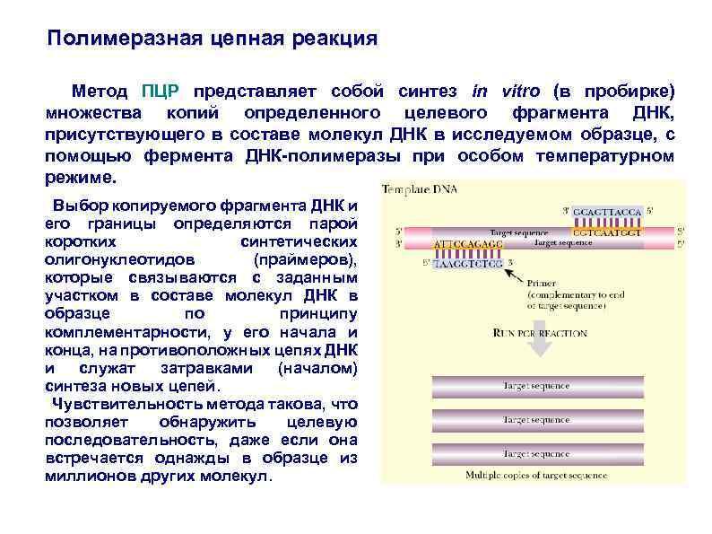 Пцр диагностика инфекций: что это такое за метод полимеразная цепная реакция, где сдать, как берется