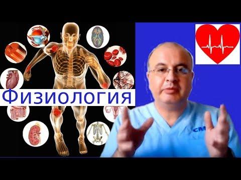 Что изучают анатомия и физиология человека. чем они отличаются?