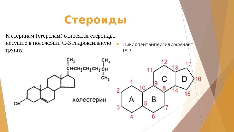 Сапонины – полезные вещества растений