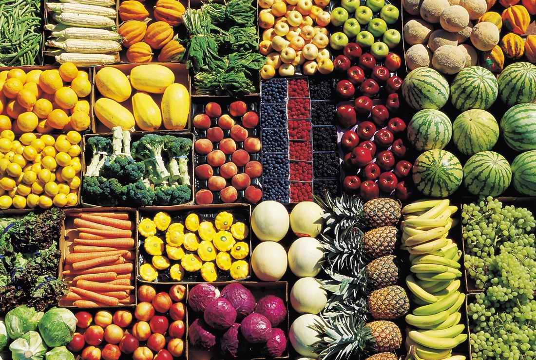Пищи — википедия. что такое пищи
