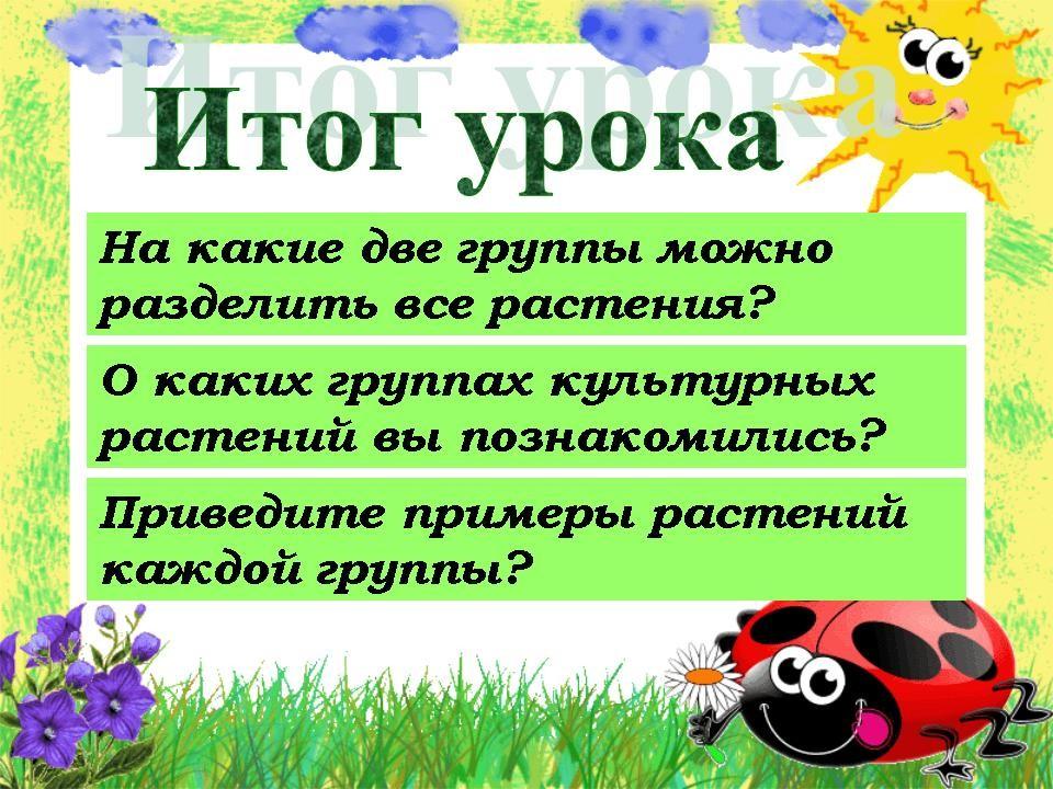 Дикорастущие растения: виды, названия, отличие от культурных :: syl.ru
