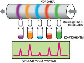 Теория хроматографии, хроматографический анализ, виды хроматографии (стр. 1 из 2)