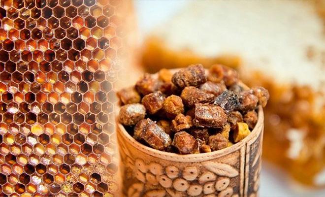 Пчелиная перга — панацея от всех болезней