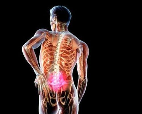 Что такое шишковидная железа головного мозга (эпифиз)? какие функции она выполняет в организме?
