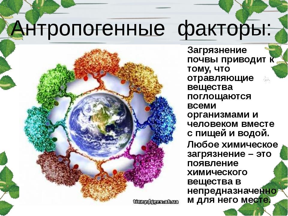 Реферат: антропогенное воздействие на окружающую среду 4 - bestreferat.ru