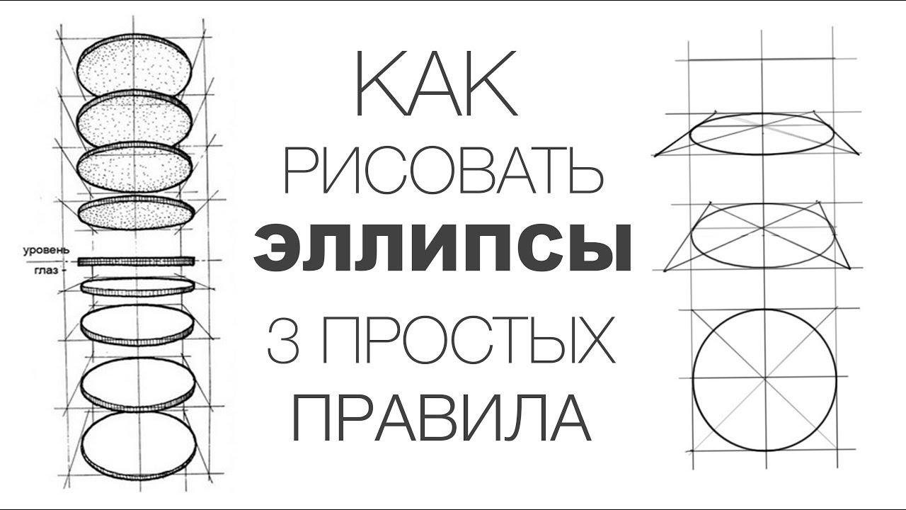 Эллиптические тренажеры: для чего они предназначены - elipsoid.ru