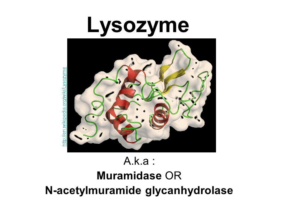Гидрохлорид лизоцима: основные свойства и условия применения