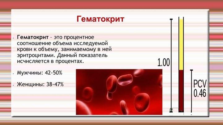 Высокий гематокрит в анализе крови у взрослых и детей - симптомом каких заболеваний является, и их лечение