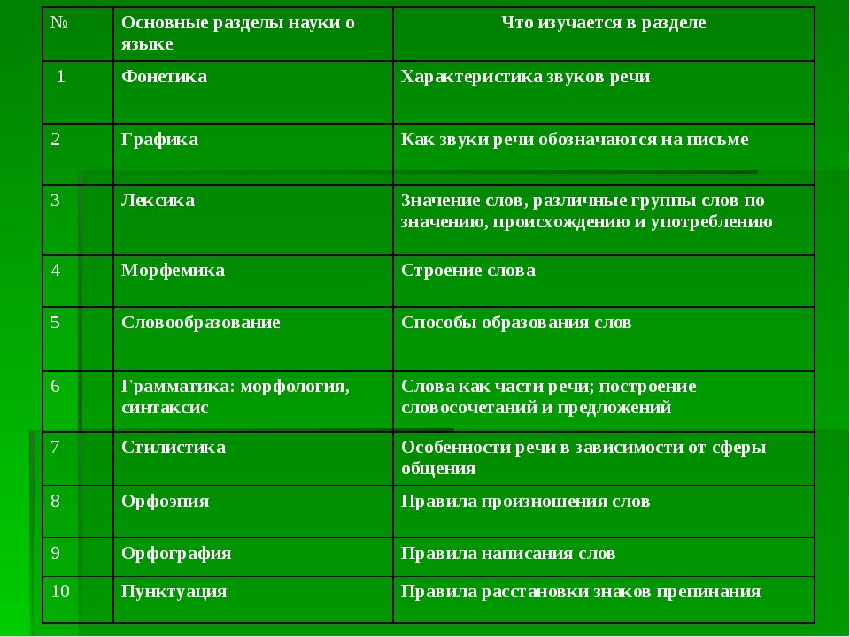 Синтаксис: наука о языке, что она изучает, основные понятия