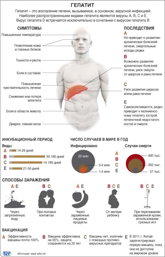 Как лечить гепатит б: современные препараты и народные средства