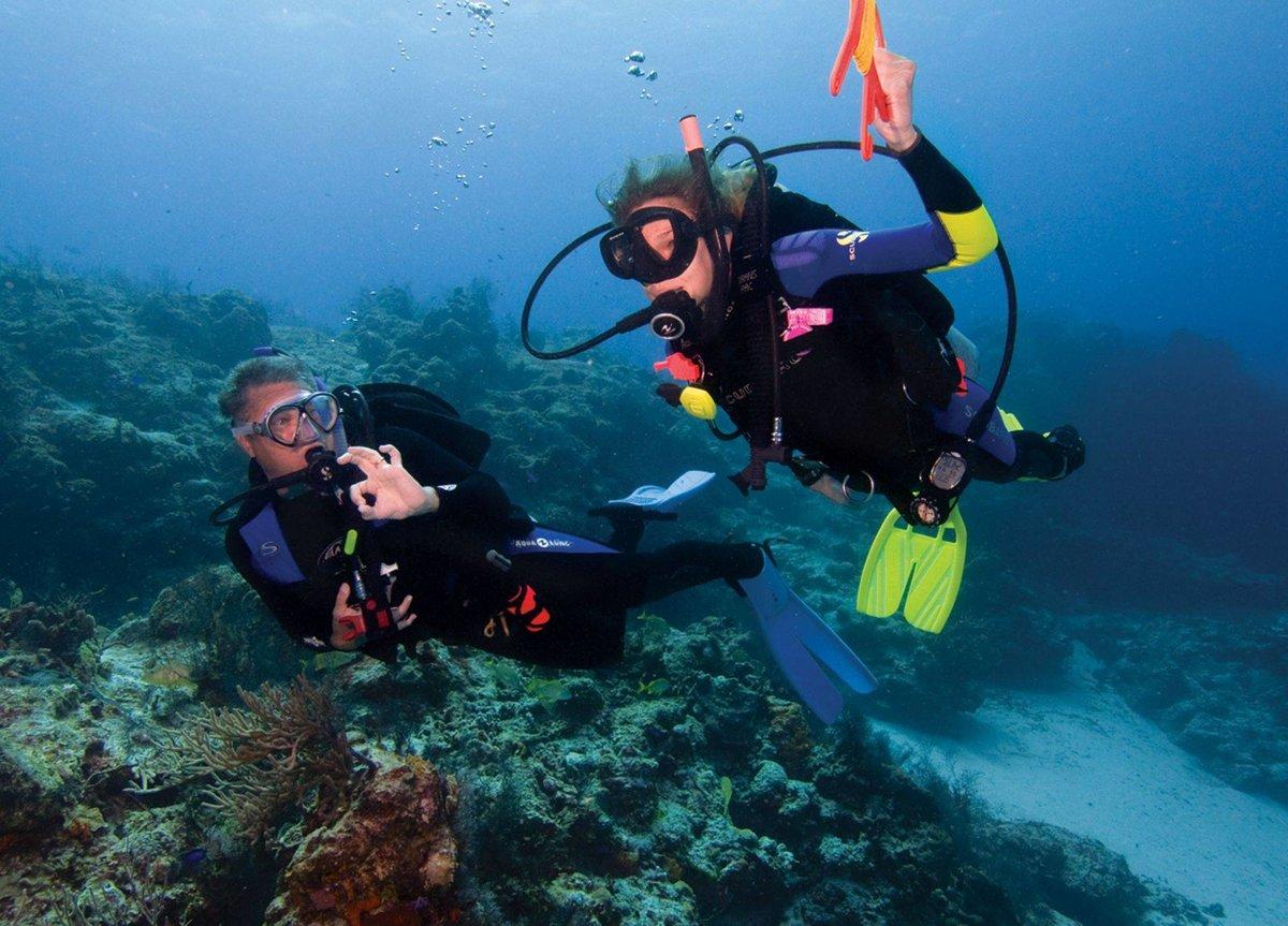 Дайвинг: описание,виды,советы,снаряжение,фото,видео. | туризм и путешествия