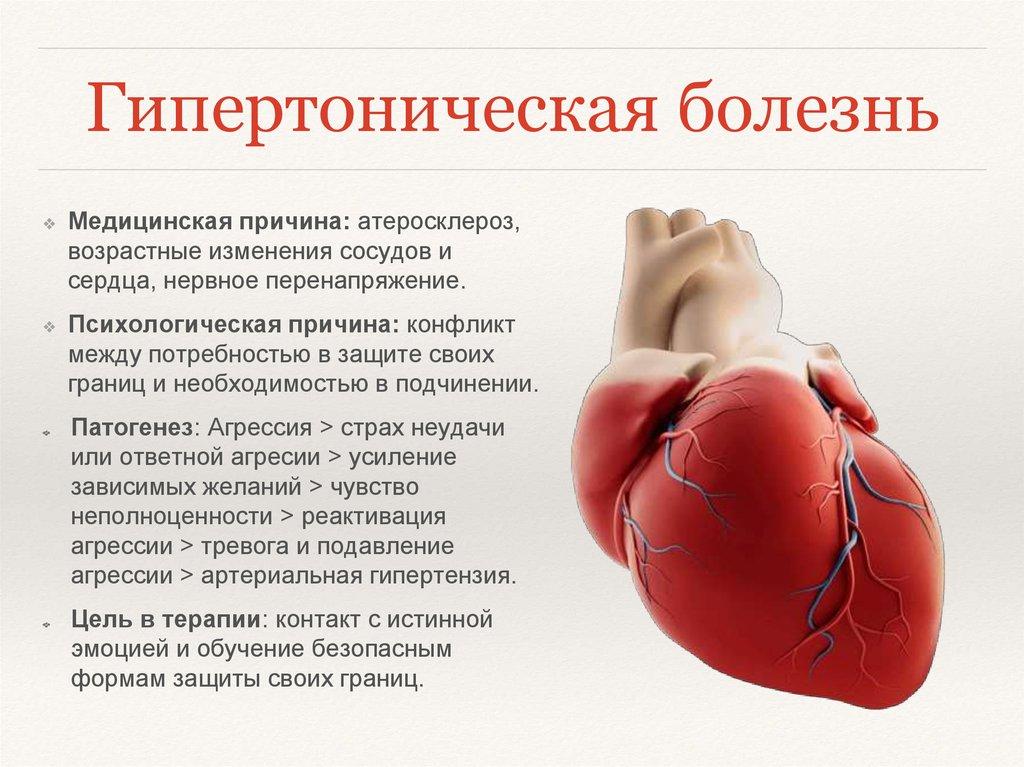 Лабильная артериальная гипертензия - что это такое и как лечить?