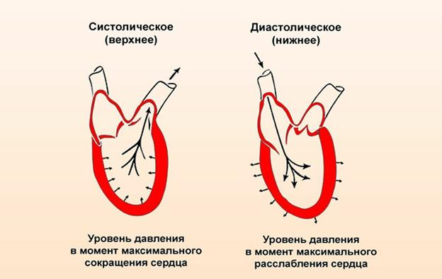 Пульсовое артериальное давление это