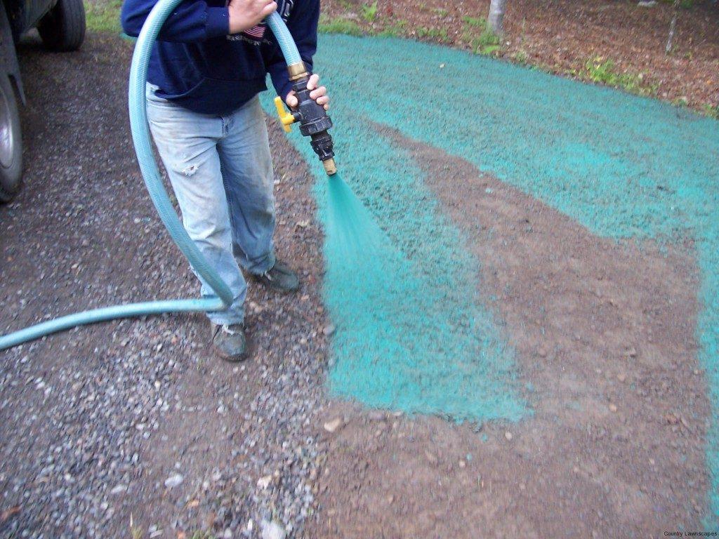 Жидкий газон hydro mousse: отзывы, инструкция, где купить