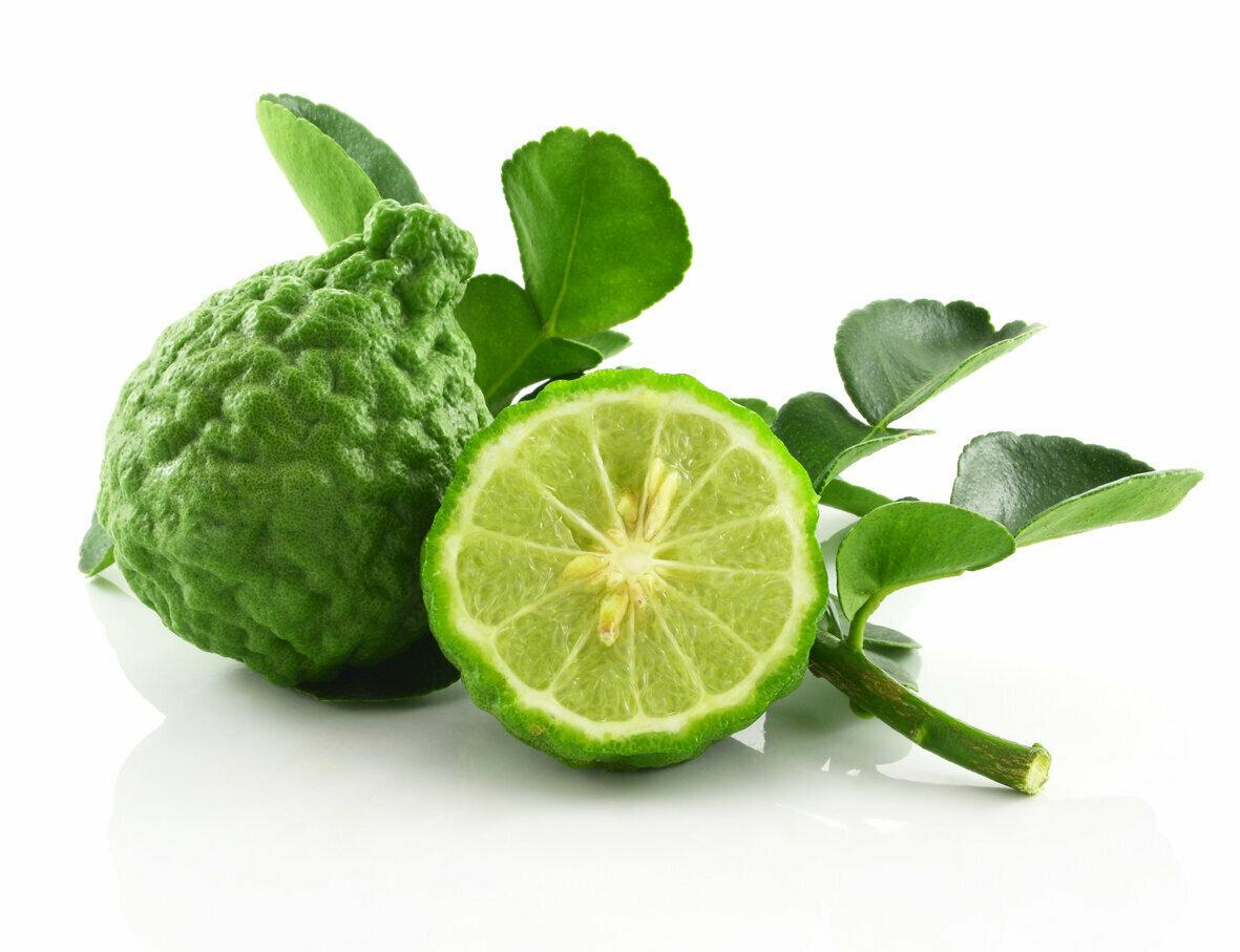 Монарда (садовый бергамот): польза и вред, лечебные свойства, фото, отзывы