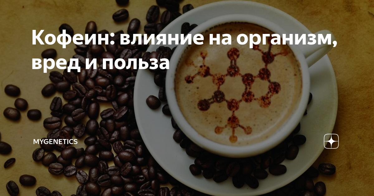 Кофеин: действие на организм, свойства и польза   food and health