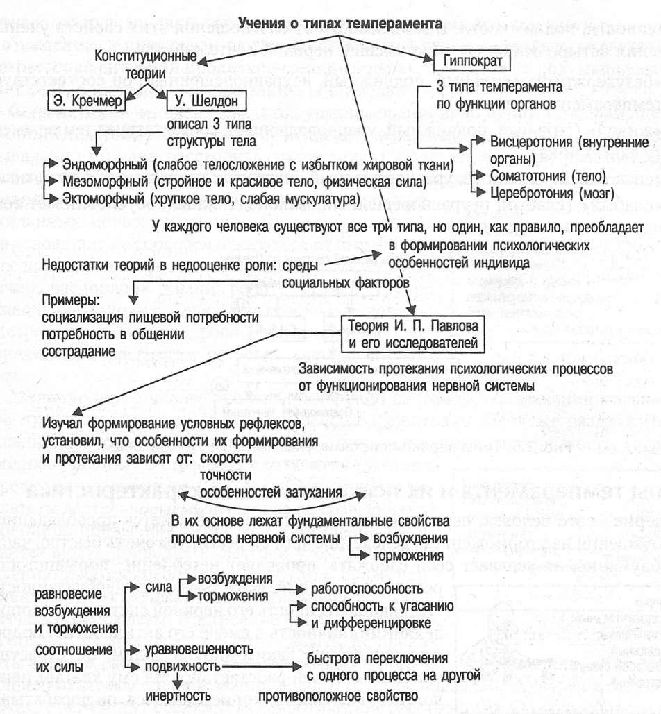 Темперамент человека. 4типа, свойства иособенности