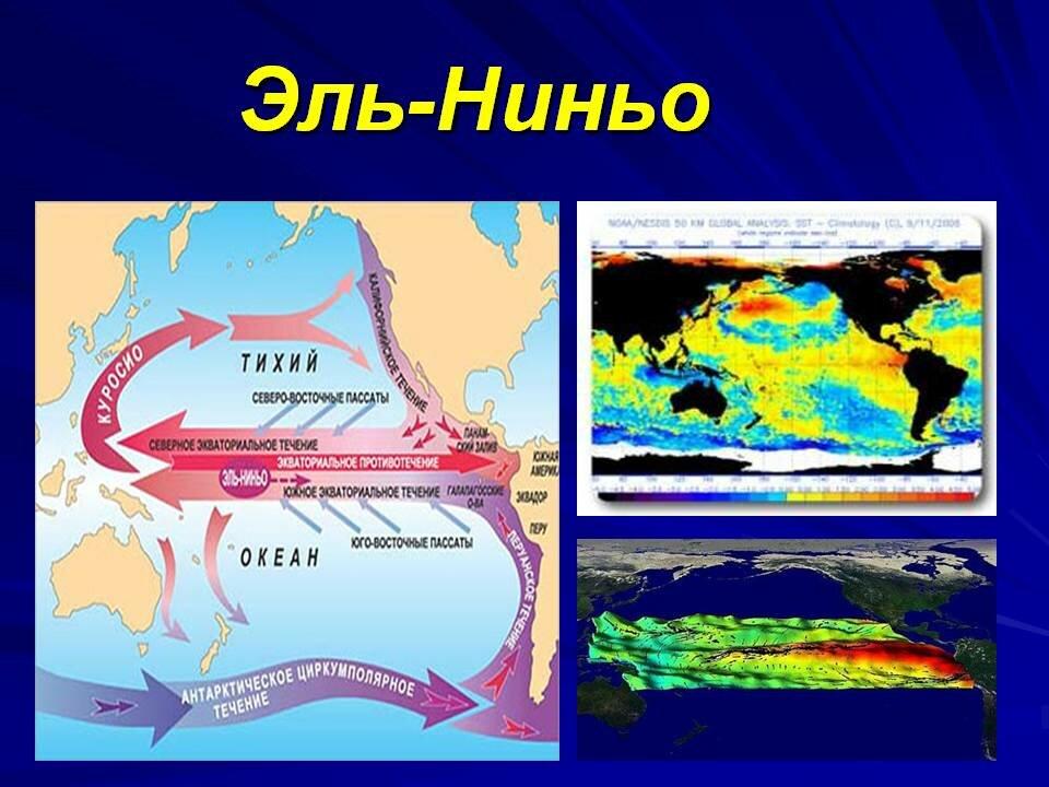 Эль-ниньо - что это? где образуется течение, его направление. феномен и явление эль-ниньо
