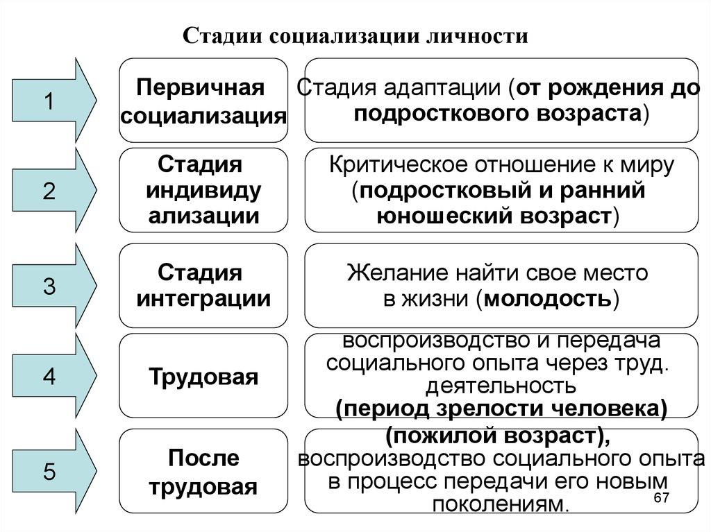 Социализация — википедия с видео // wiki 2