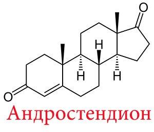 Андростендиол глюкуронид