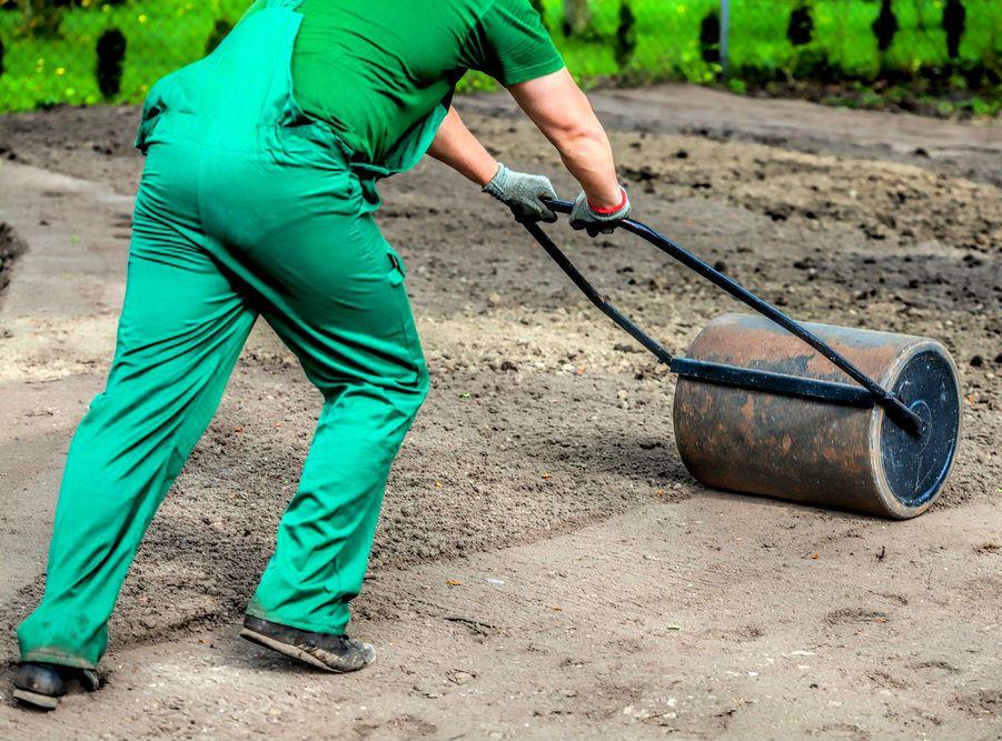Жидкий газон ????: харктеристики, описание, гидропосев газонной травы ???? все о посадке и выращивании