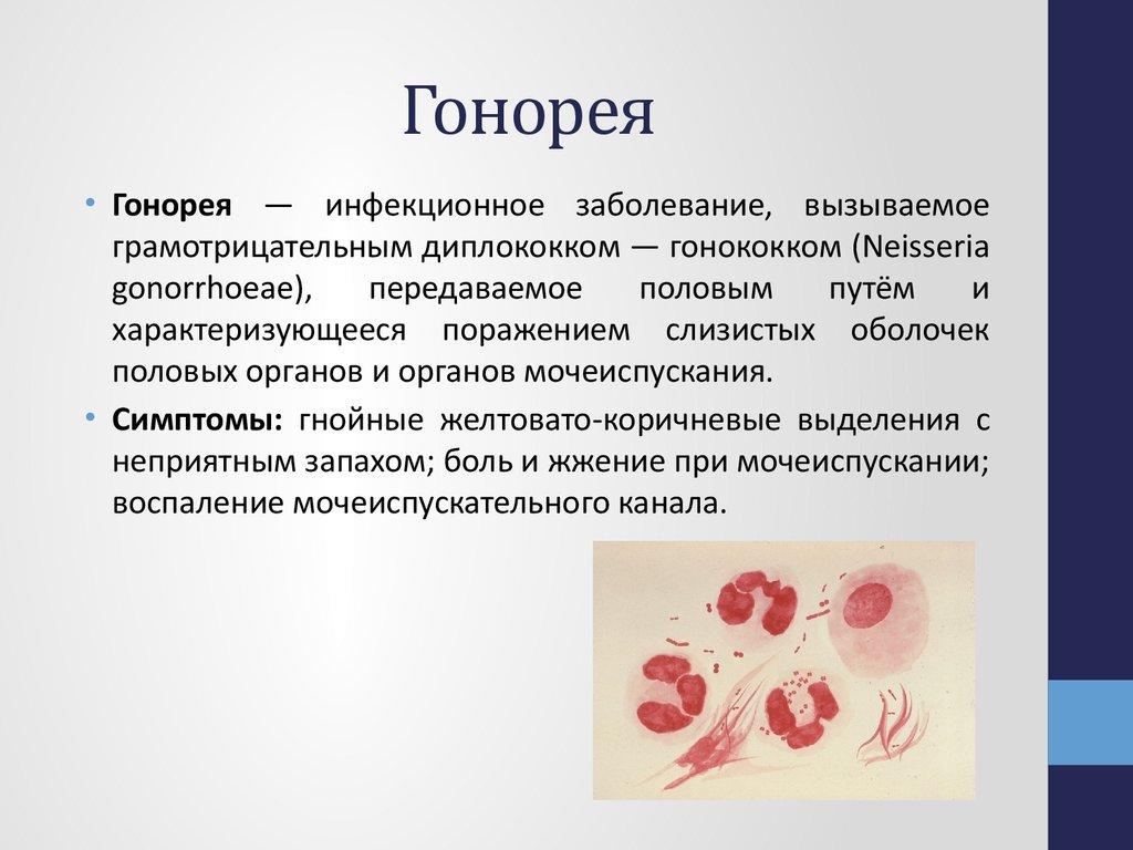 Лечение гонореи препаратами у мужчин: обзор видов препаратов с описанием