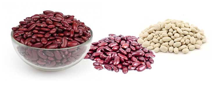 Красная фасоль: польза и вред для организма