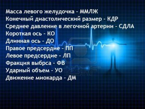 Что такое эхокс в кардиологии