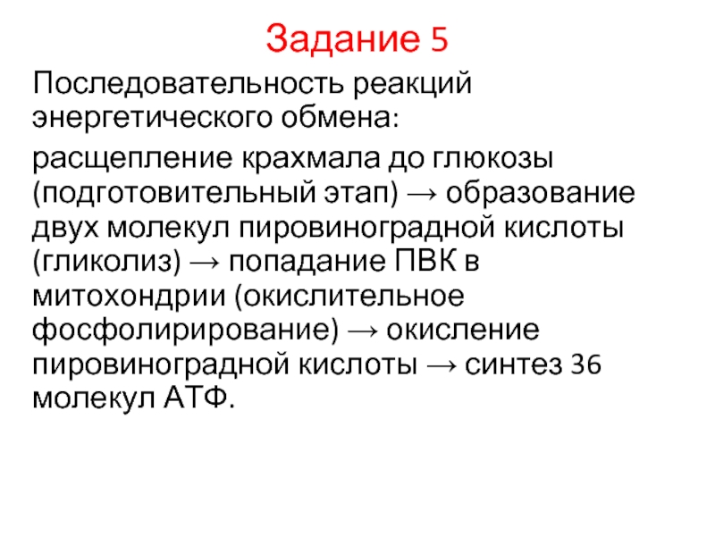 Что такое метаболизм и как ему помочь » notagram.ru