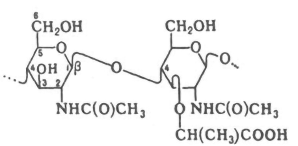 Лизоцима гидрохлорид: что это и использование лизоцима гидрохлорида