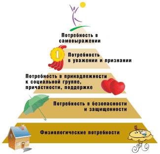 Физиологические потребности: что это такое, что к ним относится, примеры и нормы