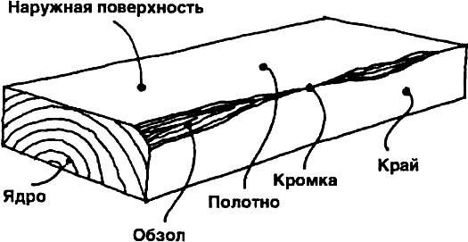 Дефекты древесины: виды, описание и способы устранения
