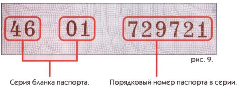 Где посмотреть номер и серию российского паспорта? — портал правовой информации: новости, документы, законы рф