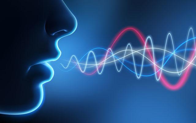 14 урок. тембр голоса