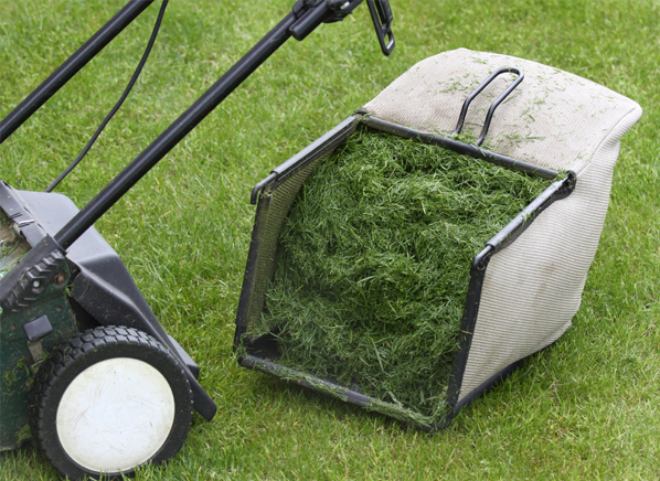 Мульчирование почвы скошенной травой: можно свежескошенной травой от газонокосилки мульчировать морковь и другие овощи на грядке? польза и вред