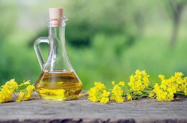 Рапсовое масло. польза и вред. состав и его свойства