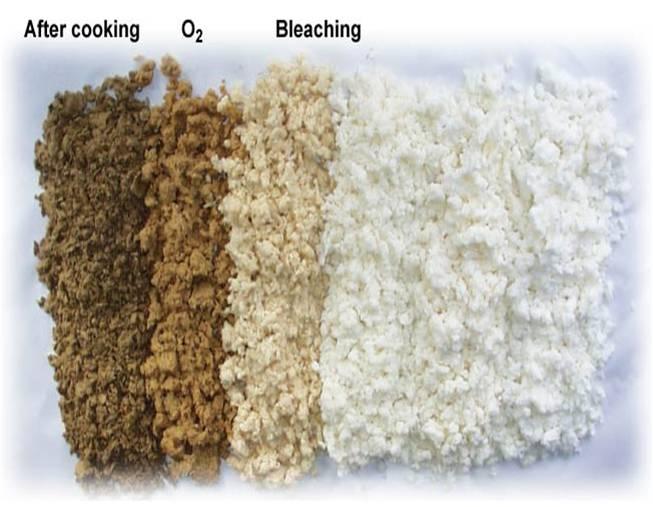 Натуральные целлюлозные волокна: описание, свойства, характеристики