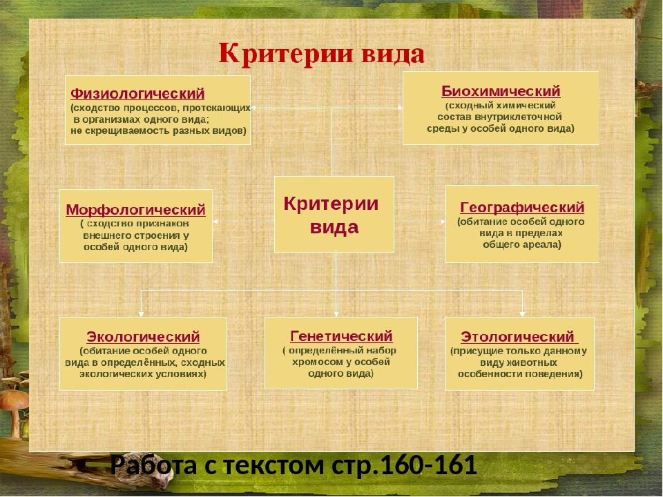 § 36. вид — биологическая система. критерии вида