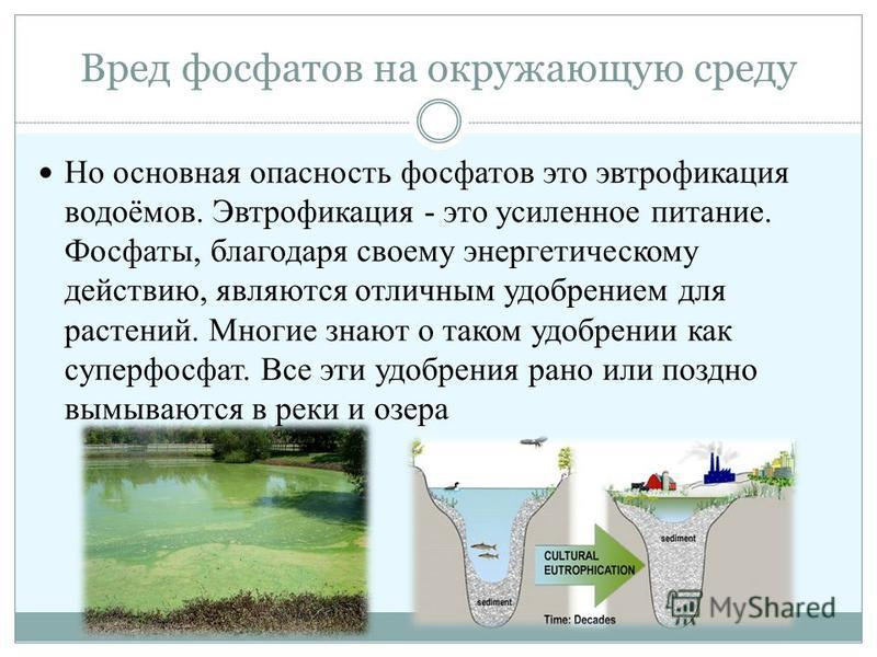 Чем опасны фосфаты?